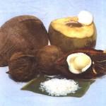 A casca de coco vem sendo usada, com sucesso, em diversos tipos de reciclagem