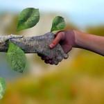 ecologia-e-desenvolvimento-sustentavel-2