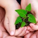 frases_sustentabilidade